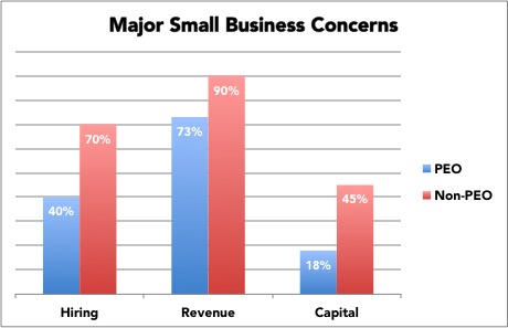 Major Small Business Concerns